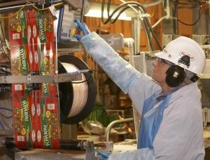 Food Technician Operating Equipment