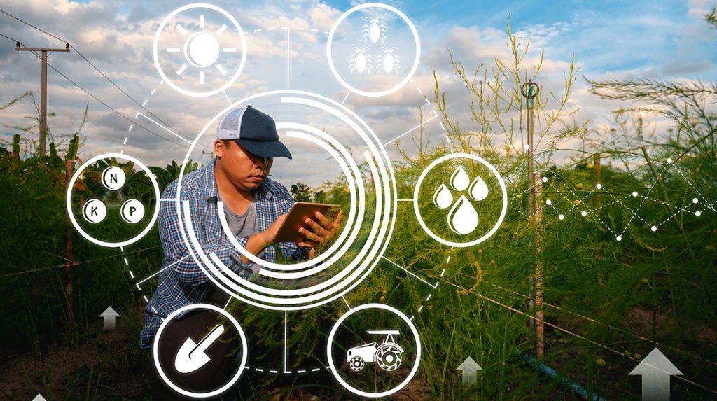 farmer using tech to monitor the field