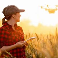 female farmer using tablet in the field